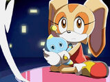 Cream the Rabbit (Sonic X)