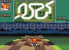 Rainy Savanna - Sonic Drift 2