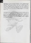 Chaotix manual br (24)