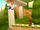 Sonic-rivals-20060818043312637 640w.jpg
