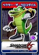 Shadow the Hedgehog karta 11