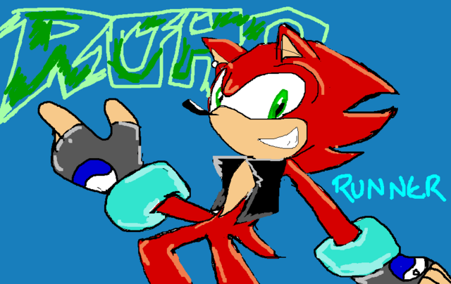 File:Road Runner by 58 to Sonic1515.png