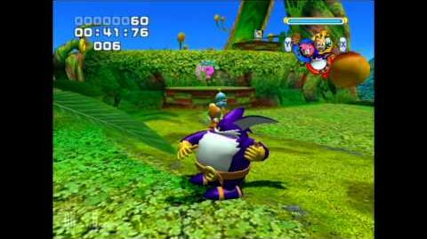 Sonic Heroes Team Blast Glitch