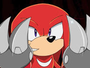 Knuckles056
