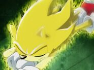 Super Sonic got hurt