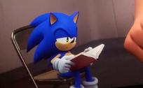 Sonic RBTI