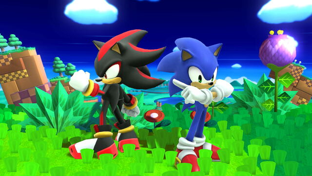 File:Sonic and Shadow in Windy Hill (5).JPG