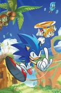 IDW Sonic 1 A artwork