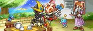 Sonic Advance 3 14