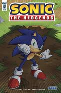 IDW Sonic 5 Cover A