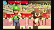 Luigi vs. Shadow