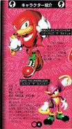 Chaotix manual japones (6)