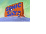 Sonic Says