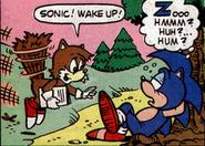 SonicWakeUp