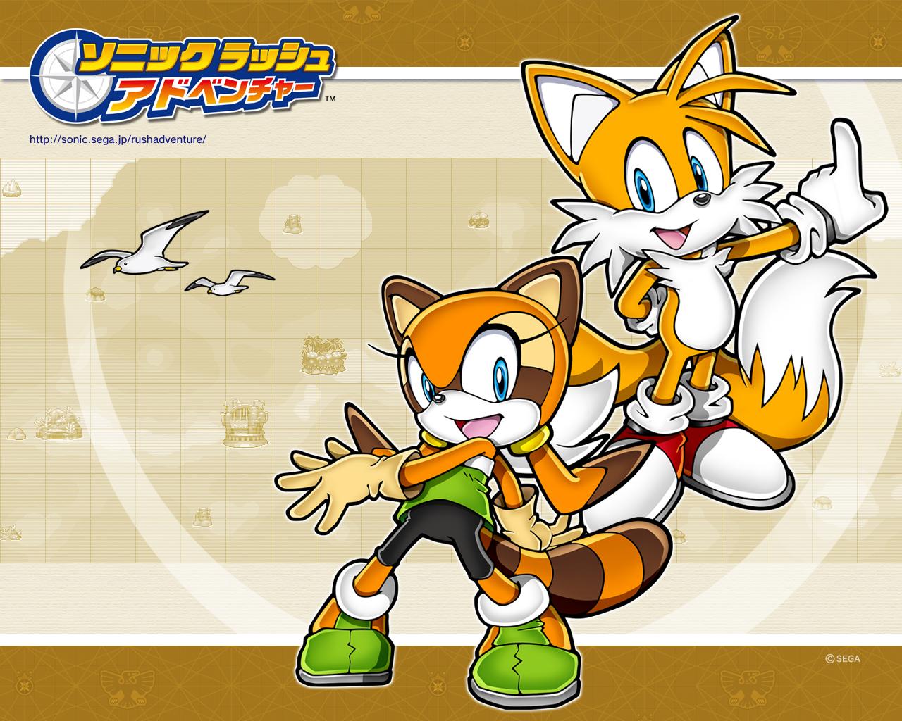 Sonic rush adventure slapps till nintendo ds