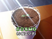 Cosmo seed ep 78