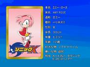 Sonic X karta 6