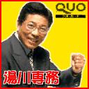 Yukawa board