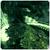 Ikona Green Cave
