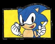 Sonic 1 warning 3