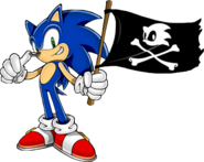Sonic Rush Adventure flag