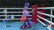 Mario & Sonic at the Rio 2016 Olympic Games - Blaze Boxing