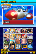 Sonic and Sega All Stars Racing DS character select 18