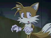 Tails004