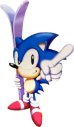 Sonic holding skis 1998
