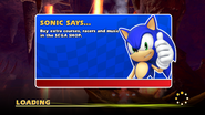 Sonic Hint 14