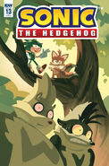 Sonic IDW -13 Cover RI