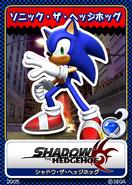 Shadow the Hedgehog karta 16