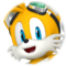 Sonic Free Riders - Tails Icon