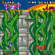 Sonic Jump 3