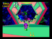 Chaotix Special 5