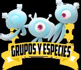 GruposEspP