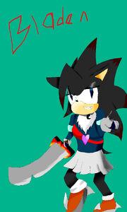 Bladen The Hedgehog2