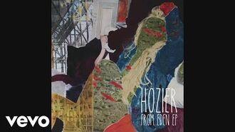 Hozier - Arsonist's Lullabye (as heard on 'The Walking Dead' -Audio-)