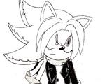 Burn The Hedgehog