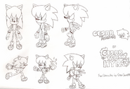 Cesar the Hedgehog concept art