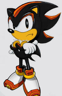 Classic shadow the hedgehog by 1990irock