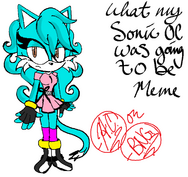 What my sonic oc was going to be meme