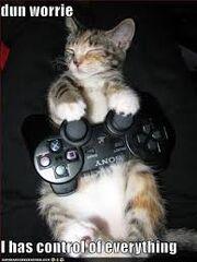 LOLcat is LOL