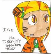 Iris the Tiger-Lily Seedrian