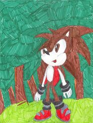 Mark the Hedgehog in Eterna Forest