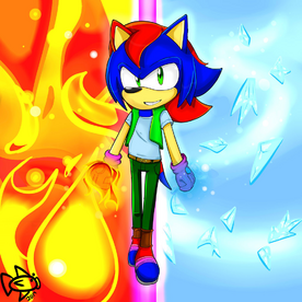 Splice The Hedgehog6