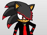 "Nightwing ""Schatten"" the Hedgehog"