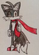 Midnight the Fox