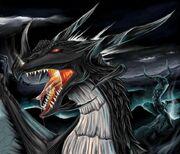 Marki the Dragon