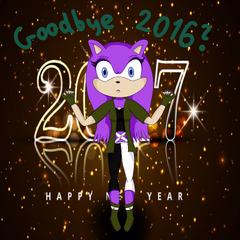 Pożegnanie 2016 roku